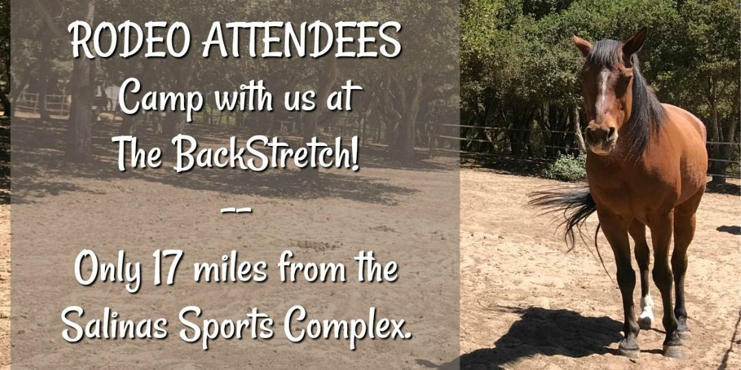 The BackStretch Welcomes Rodeo Attendees